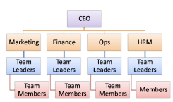 Image result for organisational hierarchy