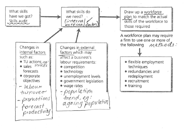 internal and external workforce planning factors Internal and external workforce planning factors p1- identifying the internal and external factors in human resource planningin this report i will describe the internal and external factors to consider when planning the human resource requirements of.